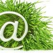 Symbol  in grass — Stock Photo