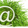 Symbol  in grass — Stockfoto