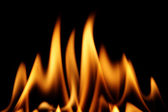 Fire on black — Stock Photo