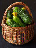 Komkommers. — Stockfoto