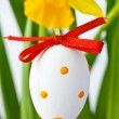 Easter egg. — Stock Photo