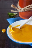 Molho de mostarda. — Foto Stock