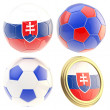 Slovakia football team attributes isolated — Stock Photo