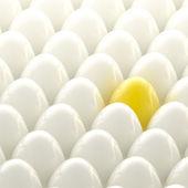 Golden egg among usual white eggs — Stock Photo