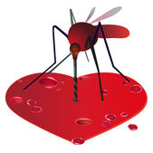 Mosquito on the red bleeding heart — Stock Vector