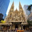 Saint Patricks Cathedral, NYC — Stok fotoğraf