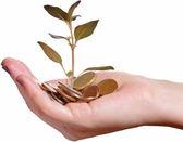 Investeringen en economie groei concept — Stockfoto