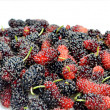 Mulberries — Stock Photo #10382311