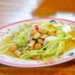 Thai Mango Salad — Stock Photo #9590001
