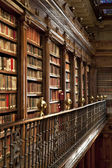 Lots of old books in a old library — Stock Photo