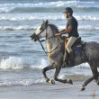 Rider galloping on horseback along the beach - Stock Photo