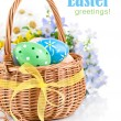Easter eggs in basket with spring flowers — Stock Photo #9354071