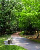 Park bench along trail during spring — Stock Photo
