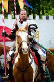 Portrait of knight — Stock Photo