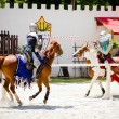 Knights in action at Georgia Renaissance Festival - Stock Photo