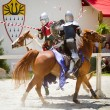 Knights in action at Georgia Renaissance Festival - Foto de Stock