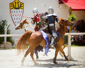 Knights in action at Georgia Renaissance Festival — Stock Photo