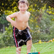 Young boy or kid cools off by playing in water sprinkler at home in his back yard on hot summer day — Stock Photo #9677542
