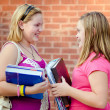 Stock Photo: Two adolescent or teen girls talking outside school during fall