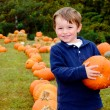 Happy young boy picking a pumpkin for Halloween — Stok fotoğraf