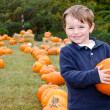 Foto de Stock  : Happy young boy picking a pumpkin for Halloween