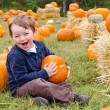 Happy young boy picking a pumpkin for Halloween — Stock Photo #9677623