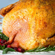 Roasted turkey stuffed with cranberries and herbs for Thanksgiving or Christmas dinner — Stock Photo
