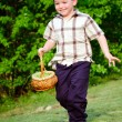Boy on easter egg hunt — Stockfoto