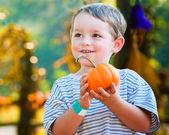 Feliz niño escoger una calabaza de halloween — Foto de Stock
