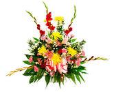 Arranjo de flores coloridas, isolado no branco. — Fotografia Stock