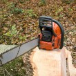Chainsaw — Stock Photo #10045682