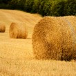 Straw bale — Stock Photo #8424740