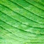 Green waves — Stock Photo