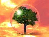 De groene boom in de zeepbel — Stockfoto