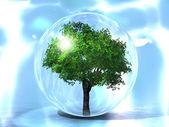 The green tree — Stock Photo