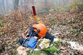 The tools of the lumberjack — Stock Photo