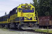 Train in Alaska — Stock Photo