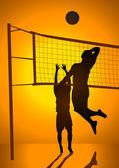Volley Ball — Stock Vector