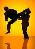 Martial Art Match — Stock Vector