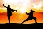 Shaolin Monk — Stock Photo