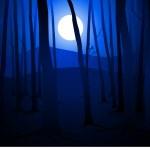 Dark Woods and Full Moon — Stock Vector