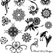 Vector de stock : Floral design elements collection