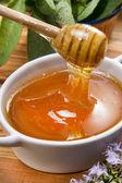 Wildflower honey — Stock Photo