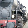 Steam train — Stock Photo #7966399