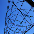 Perimeter protected with barbed wire - Stock Photo