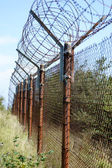Perimeter protected with barbed wire — Stock Photo