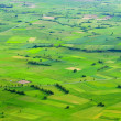 Big green meadow. - Stock Photo