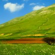 Green meadow on declivity in mountain valley. — Stock Photo