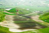 Terraced fields in hills. — Stock Photo