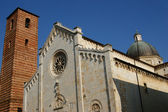 Cathedral of Pietrasanta Lucca Italy — Stock Photo